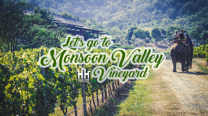 monsoon valley vineyard